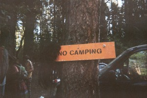 Mullet Wig Adorns the 'No Camping' Sign